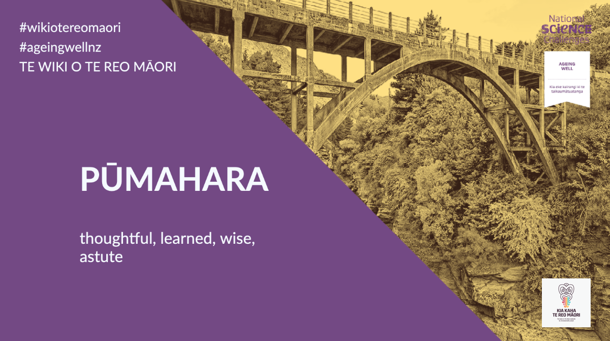 Pūmahara – thoughtful, learned, wise, astute